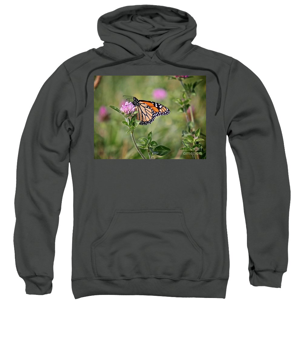 Insect Sweatshirt featuring the photograph Gold Wings by Robert Pearson
