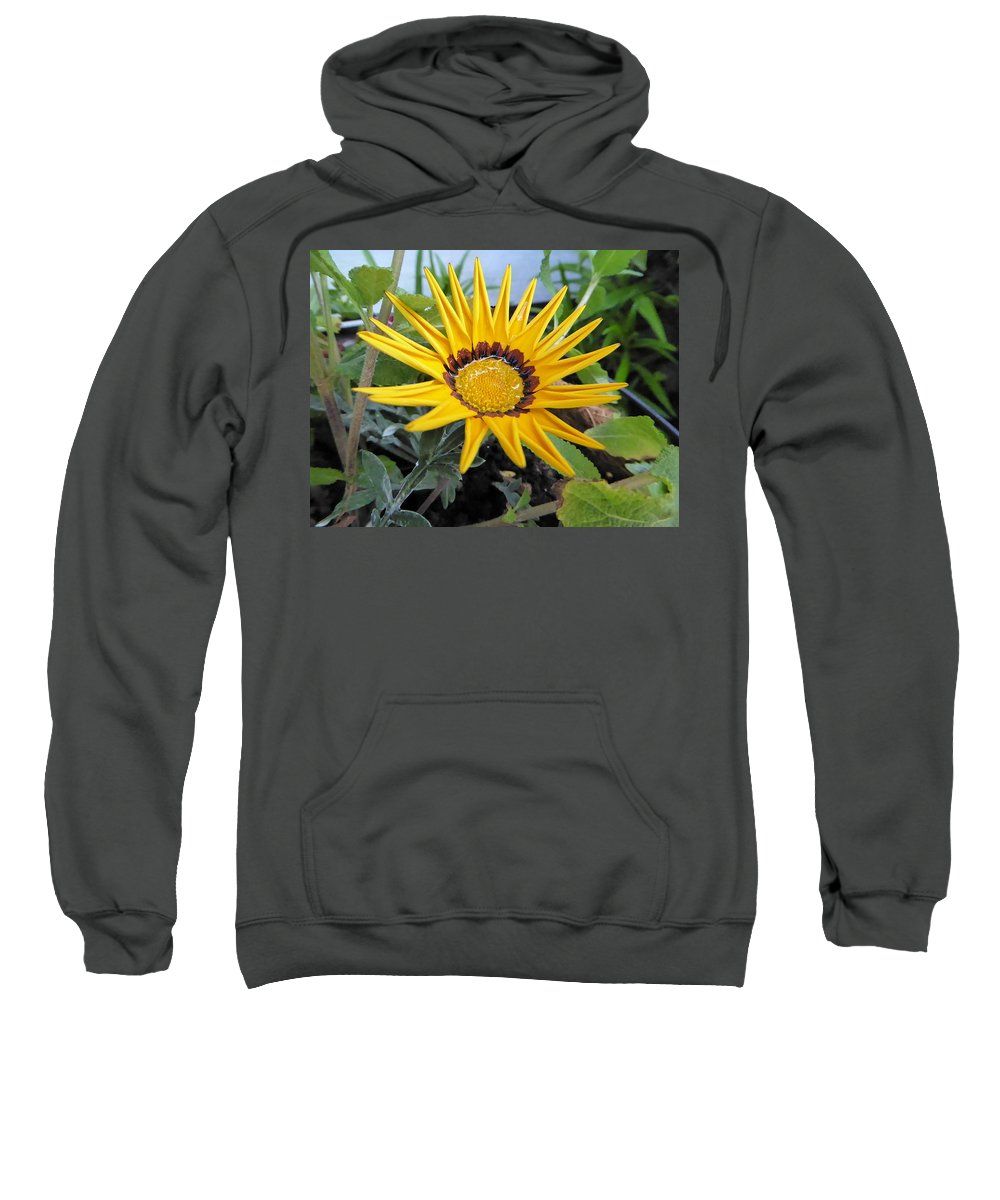 Yellow Daisy Sweatshirt featuring the photograph Golden Beauty by Lois Slaughter