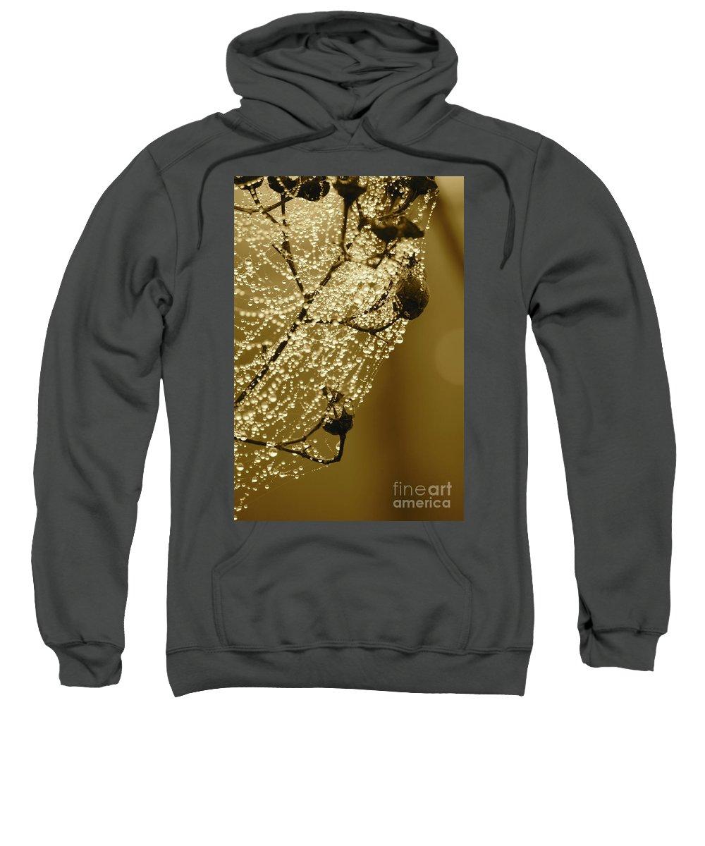 Sweatshirt featuring the photograph Golden Globes by Carol Groenen