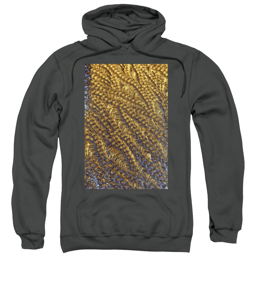 Abstract Sweatshirt featuring the photograph Golden Grains - Hoarfrost On A Solar Panel by Kim Bemis