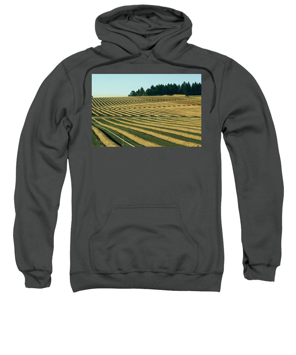 Plow Sweatshirt featuring the photograph Golden Green by Sara Stevenson