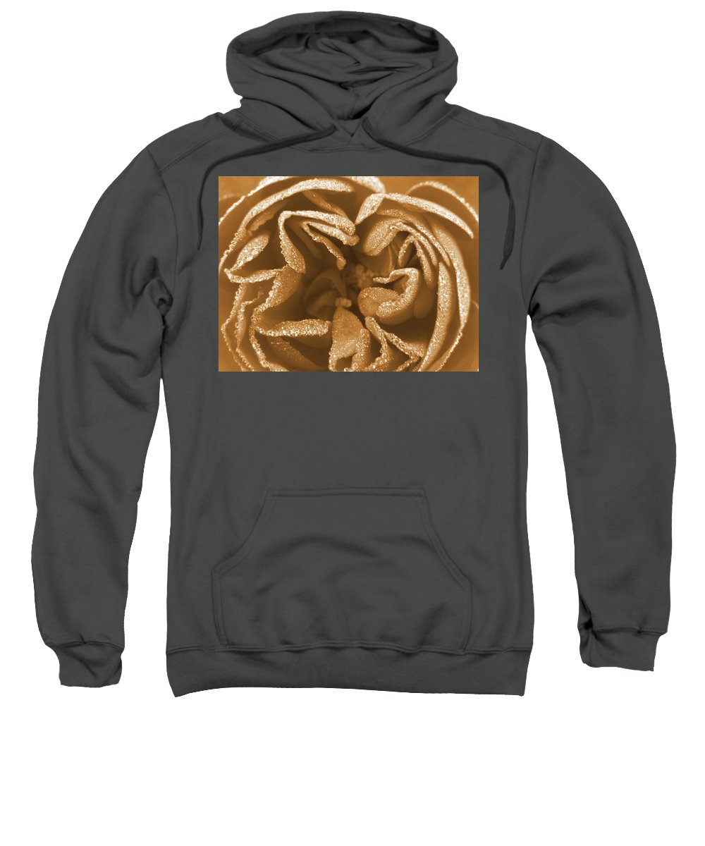 Rose Sweatshirt featuring the photograph Golden Rose by Amy Fose