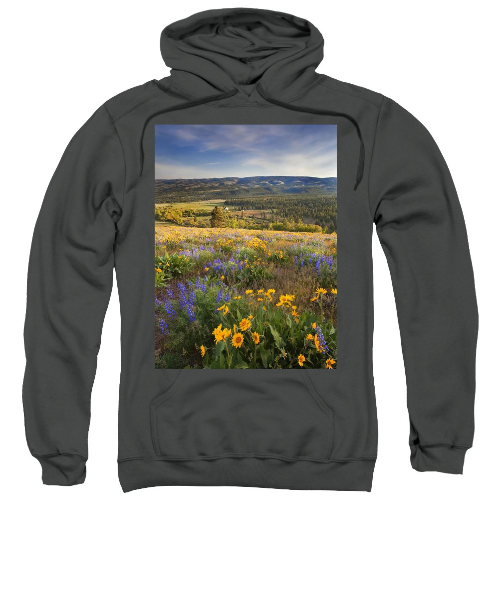 Wildflowers Sweatshirt featuring the photograph Golden Valley by Mike Dawson