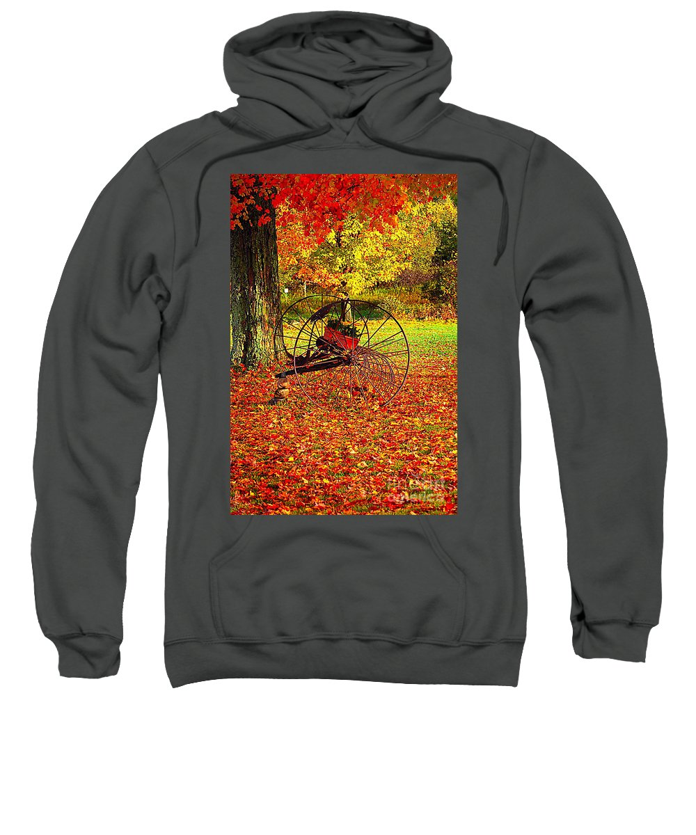 Diane Berry Sweatshirt featuring the photograph Gone With The Wind by Diane E Berry