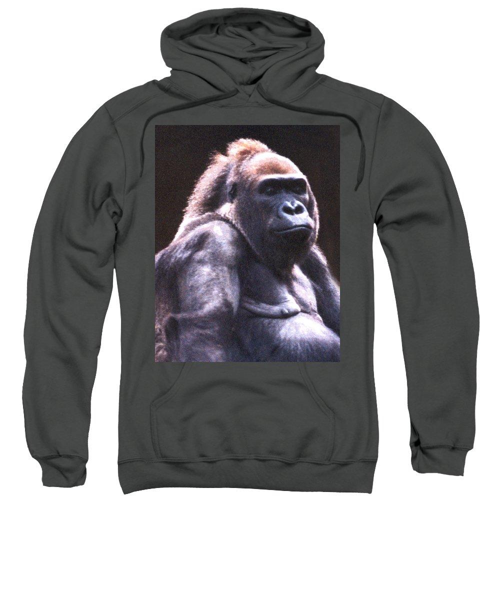 Gorilla Sweatshirt featuring the photograph Gorilla by Steve Karol