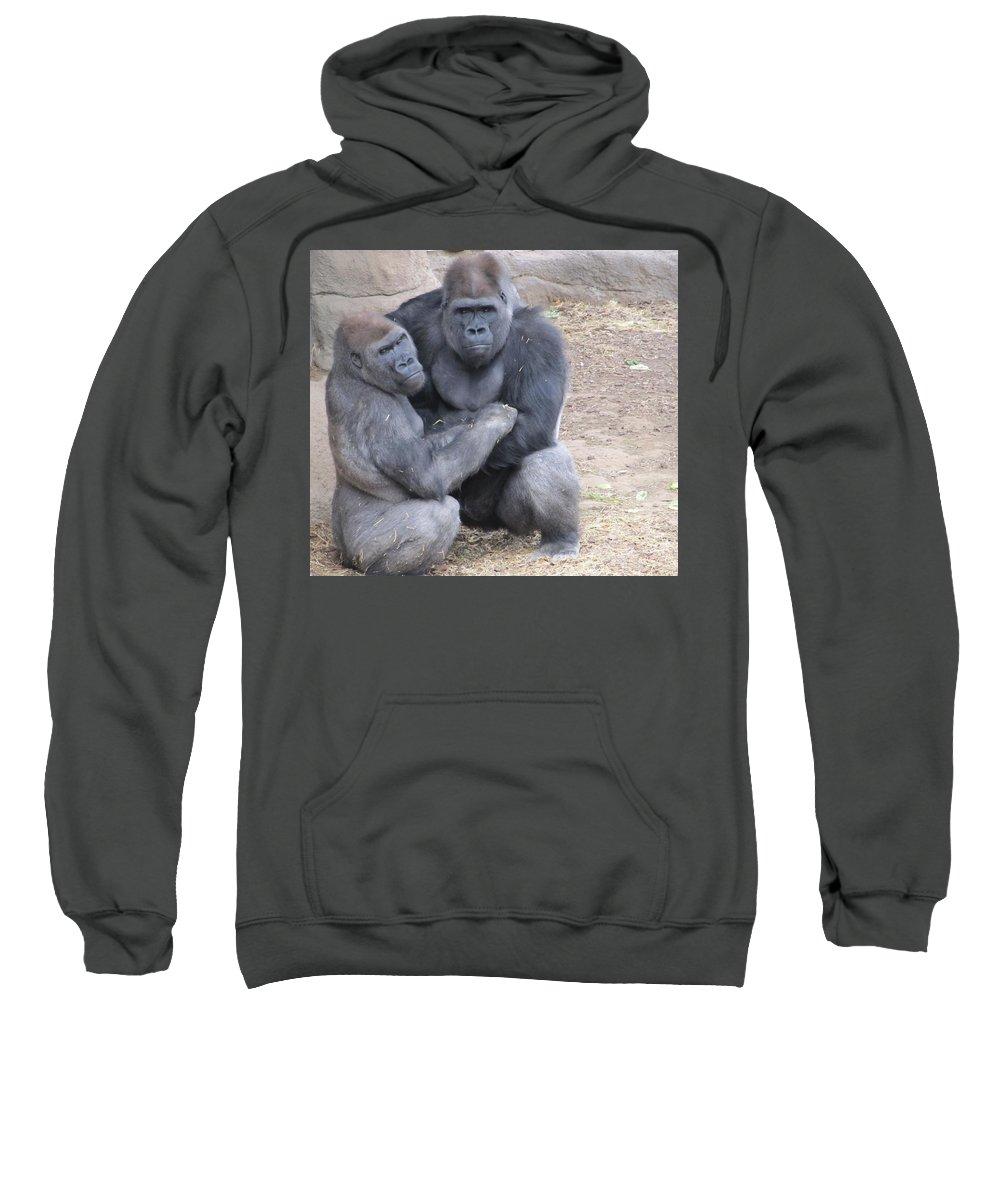 Gorilla Sweatshirt featuring the photograph Gorillas by FL collection
