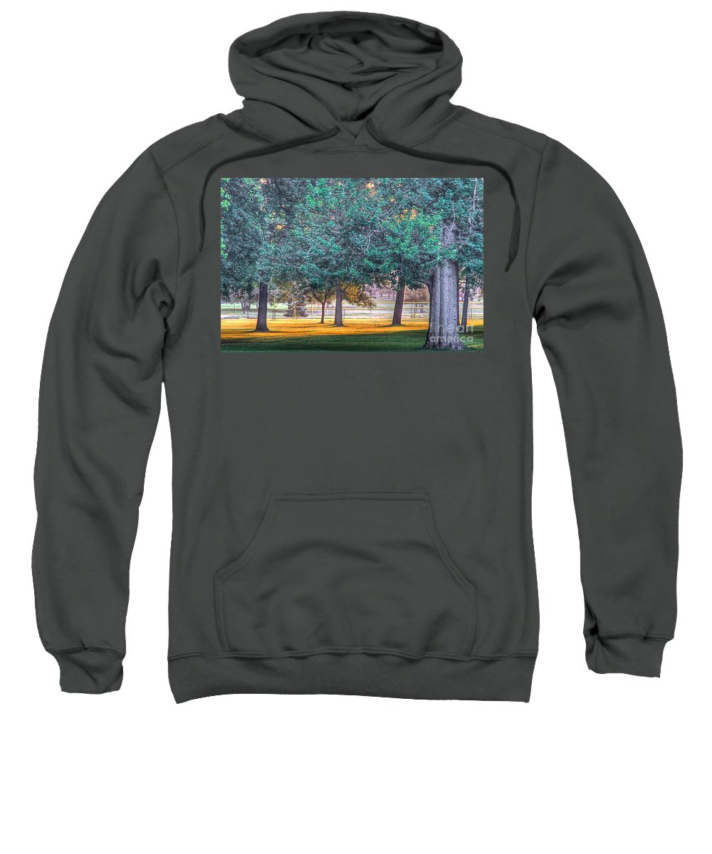 Sun Sweatshirt featuring the photograph Grass Of Gold by Robert Pearson