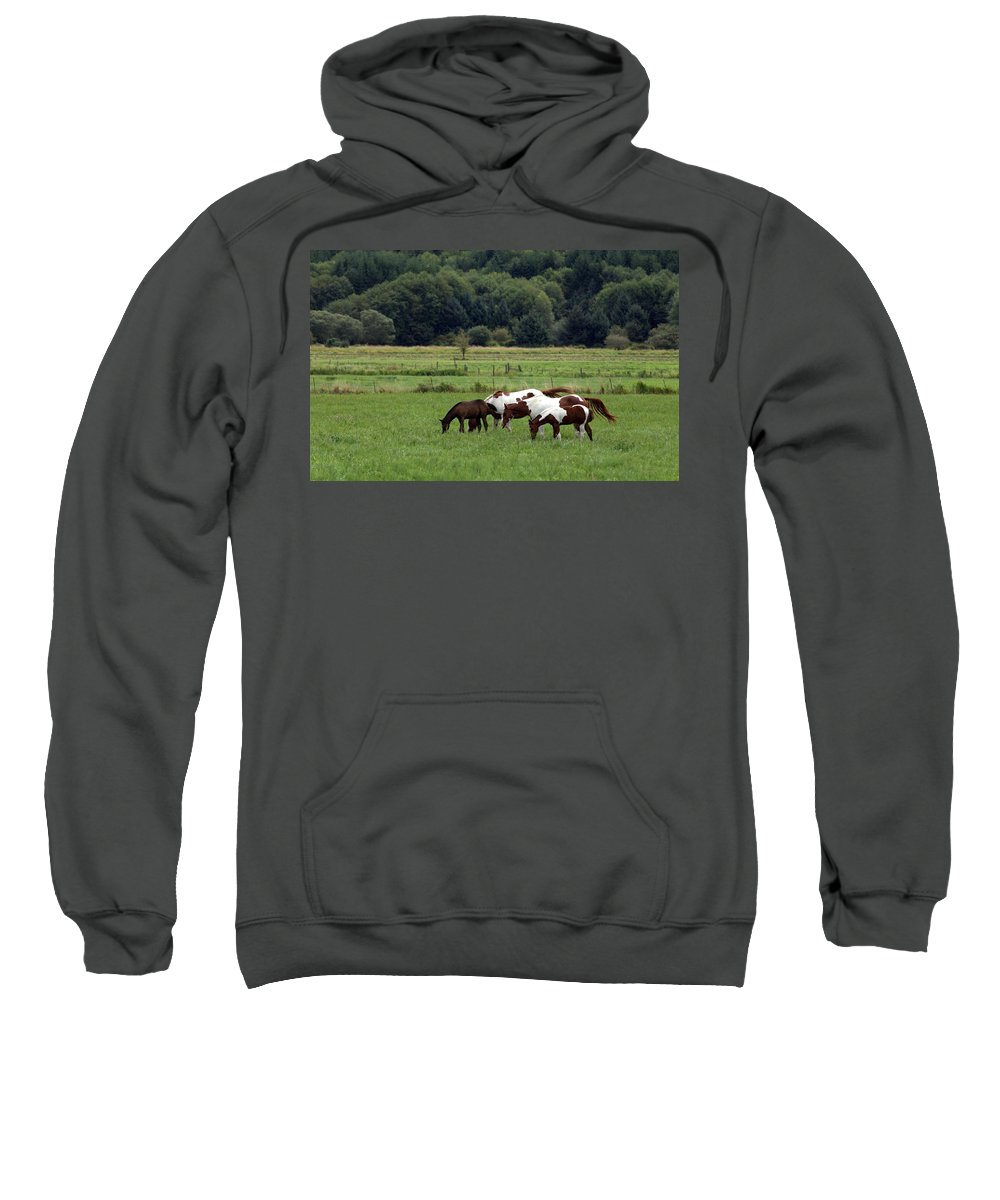 Grazing Sweatshirt featuring the photograph Grazing. by Spirit Vision Photography