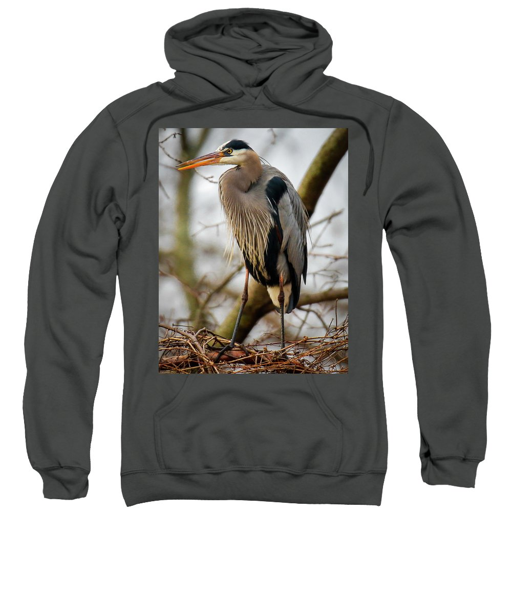 Bird Sweatshirt featuring the photograph Great Blue Heron 1 by Richard Xuereb