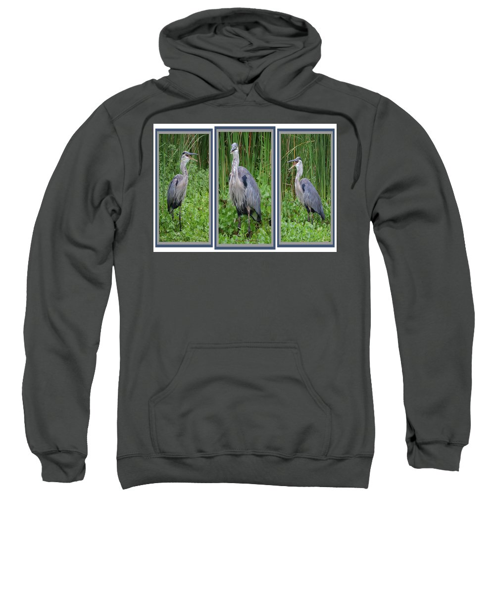 Bird Sweatshirt featuring the digital art Great Blue Heron Collage by DigiArt Diaries by Vicky B Fuller