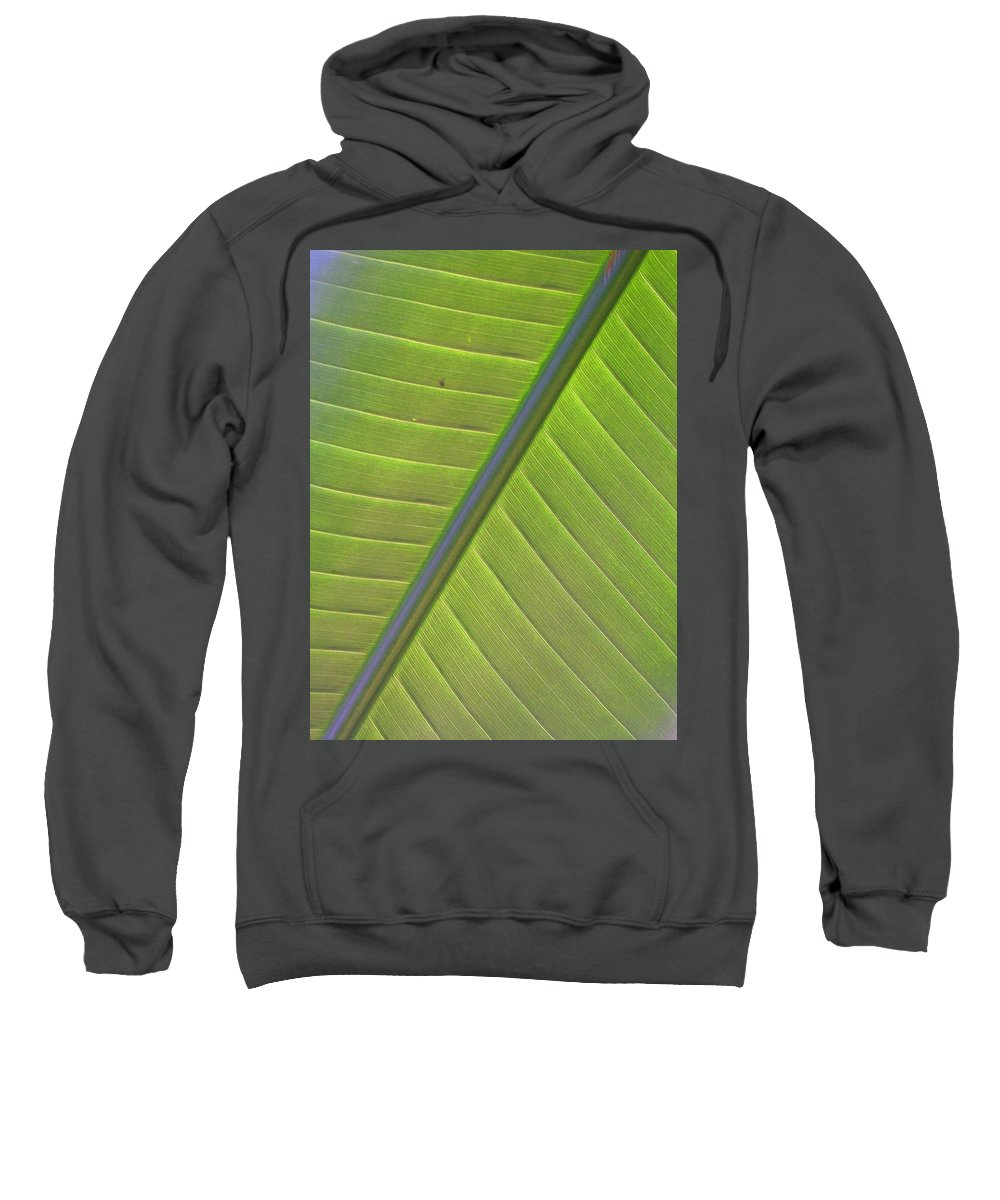Leaf Sweatshirt featuring the photograph Green And Purple Pattern by Laurie Paci