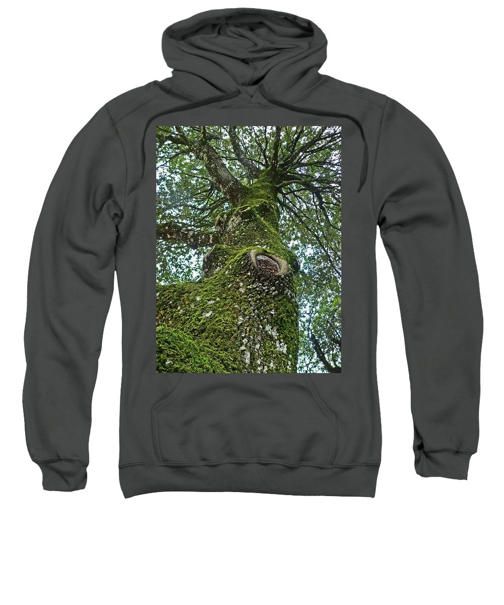 Sweatshirt featuring the photograph Green Arms by Angela Wright