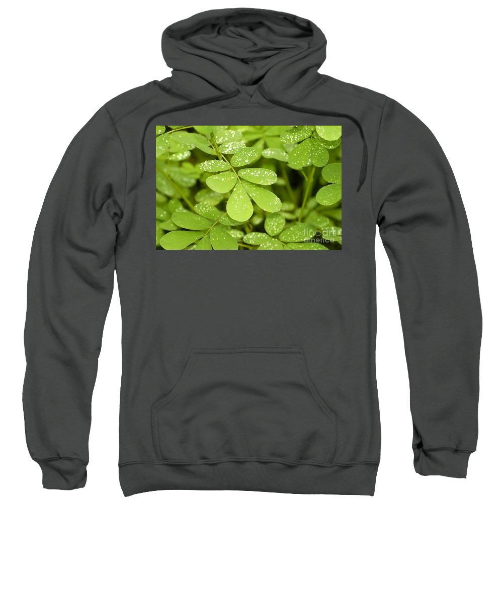Green Sweatshirt featuring the photograph Green by David Lee Thompson