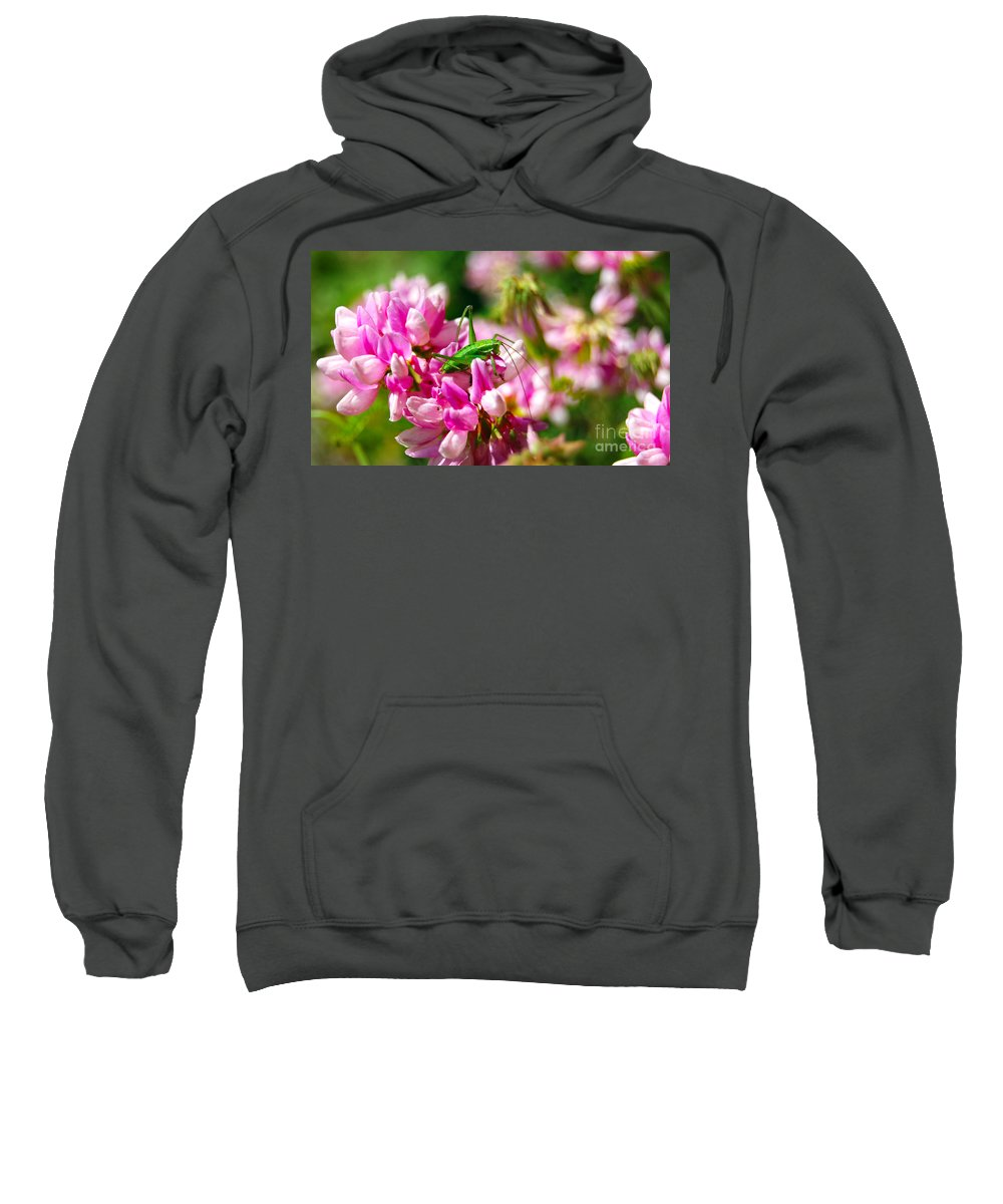 Grasshopper Sweatshirt featuring the photograph Green Grasshopper On Pink Flowers by Christo Christov