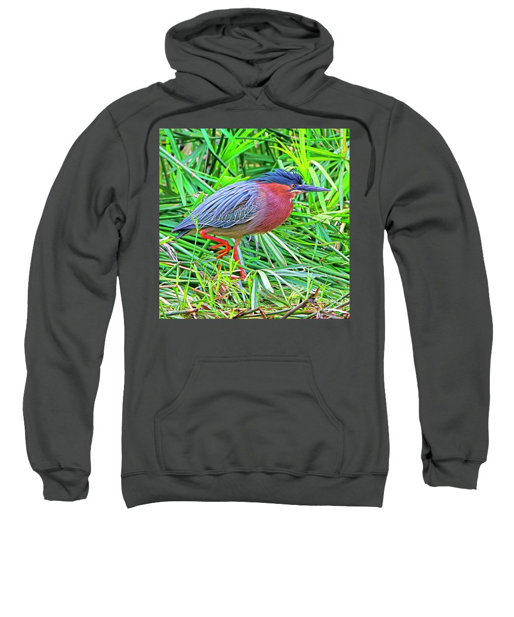 Green-backed Heron Sweatshirt featuring the photograph Green Heron by Edita De Lima