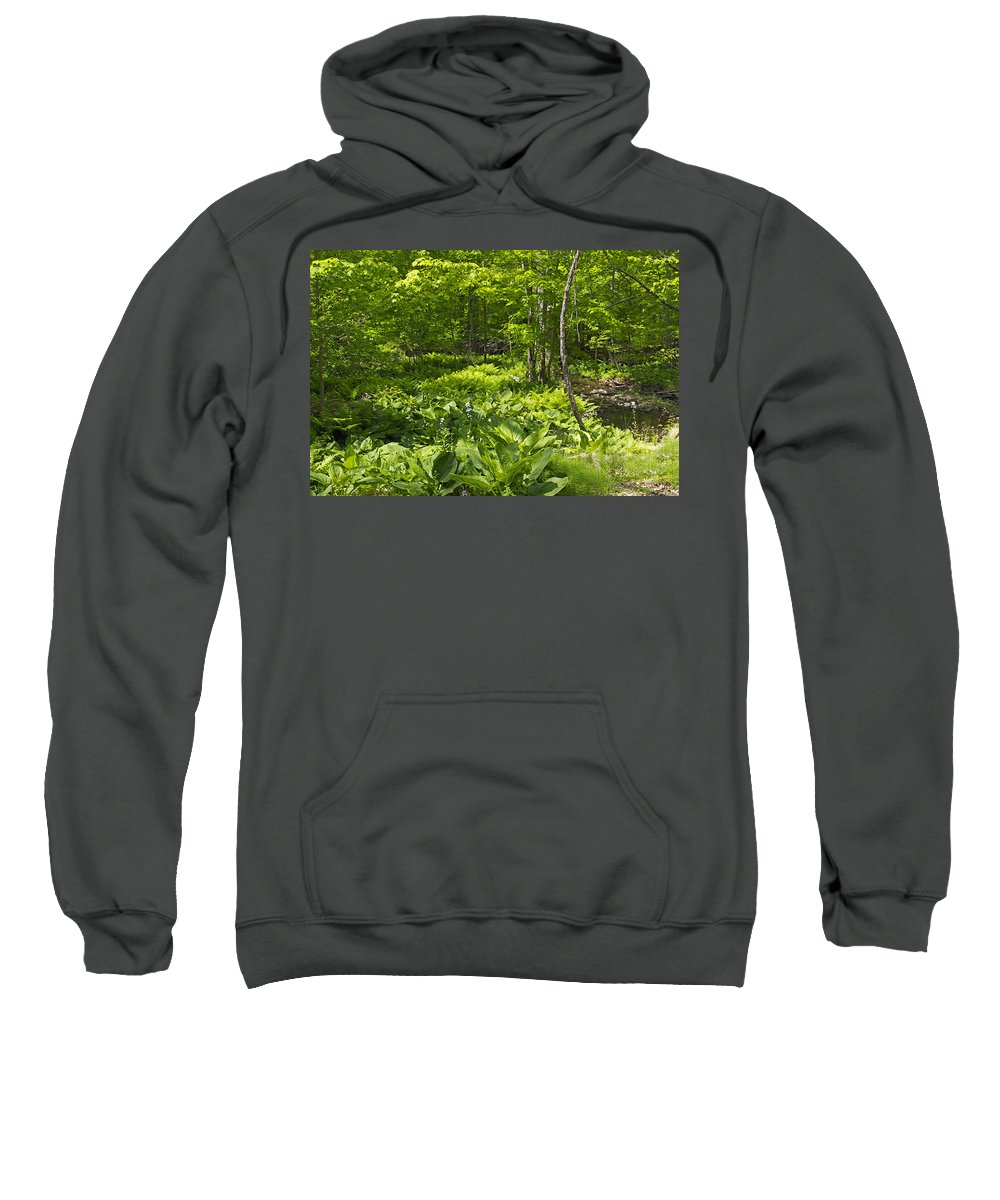Creek Sweatshirt featuring the photograph Green Landscape Of Summer Foliage by Mother Nature