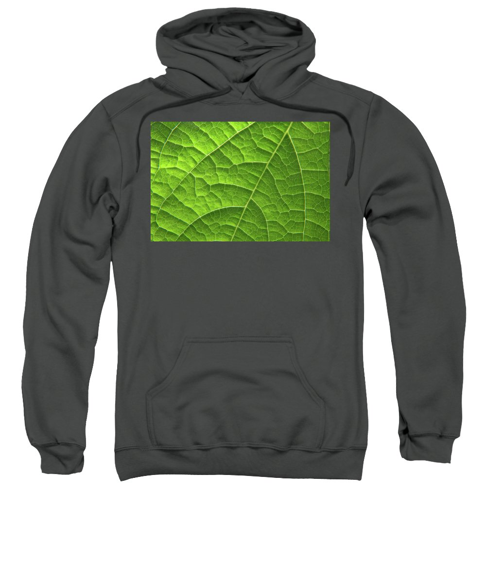 Abstract Sweatshirt featuring the photograph Green Leaf Structure by Aidan Moran