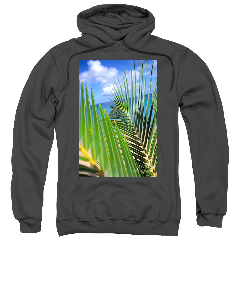 Afternoon Sweatshirt featuring the photograph Green Palm Leaves by Dana Edmunds - Printscapes