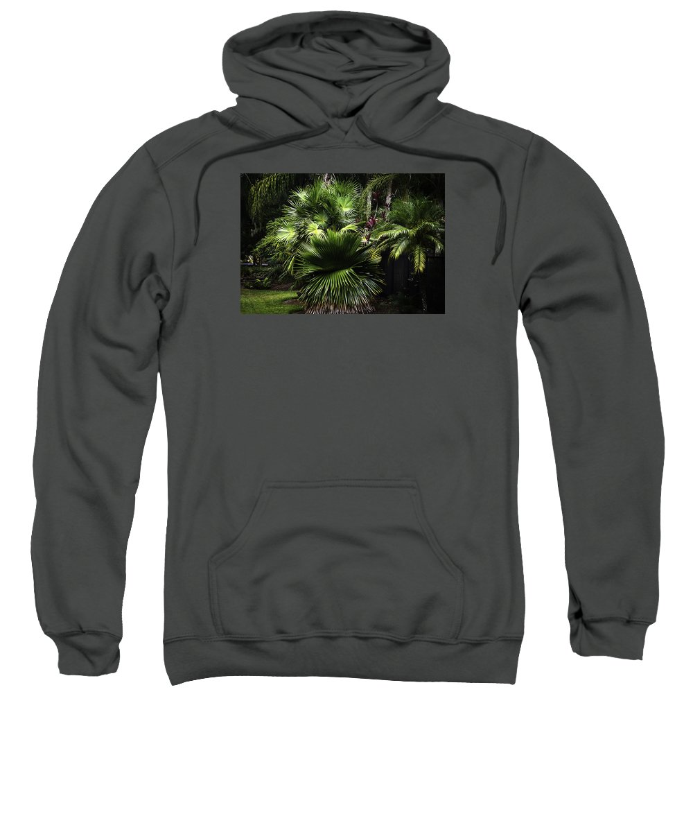 Nature Sweatshirt featuring the photograph Green With Envy by Camille Lopez