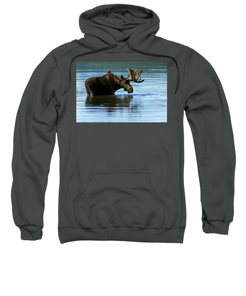 Greeting Sweatshirt featuring the photograph Greeting by Chad Dutson