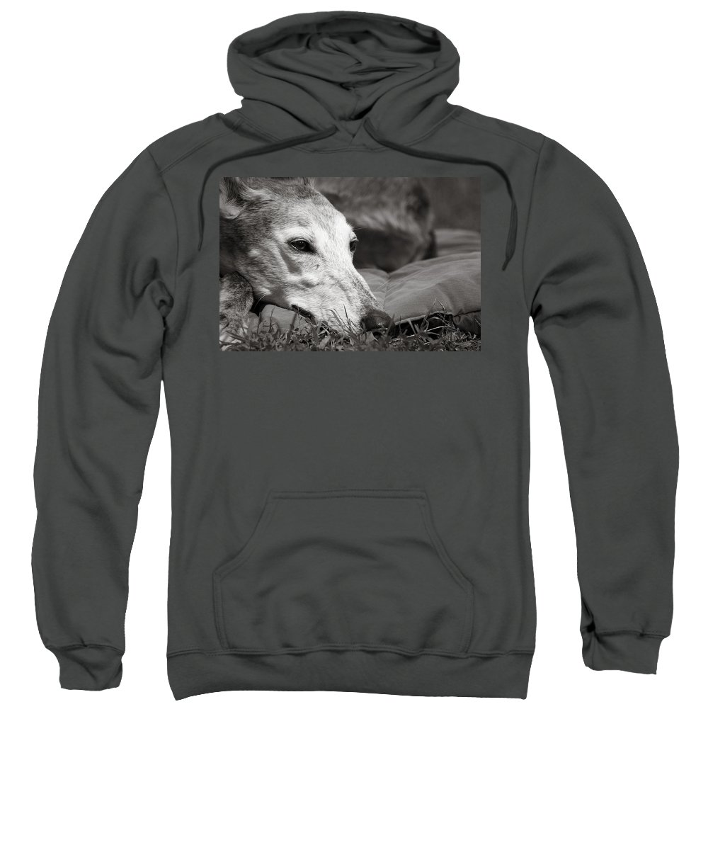 Editorial Sweatshirt featuring the photograph Greyful by Angela Rath