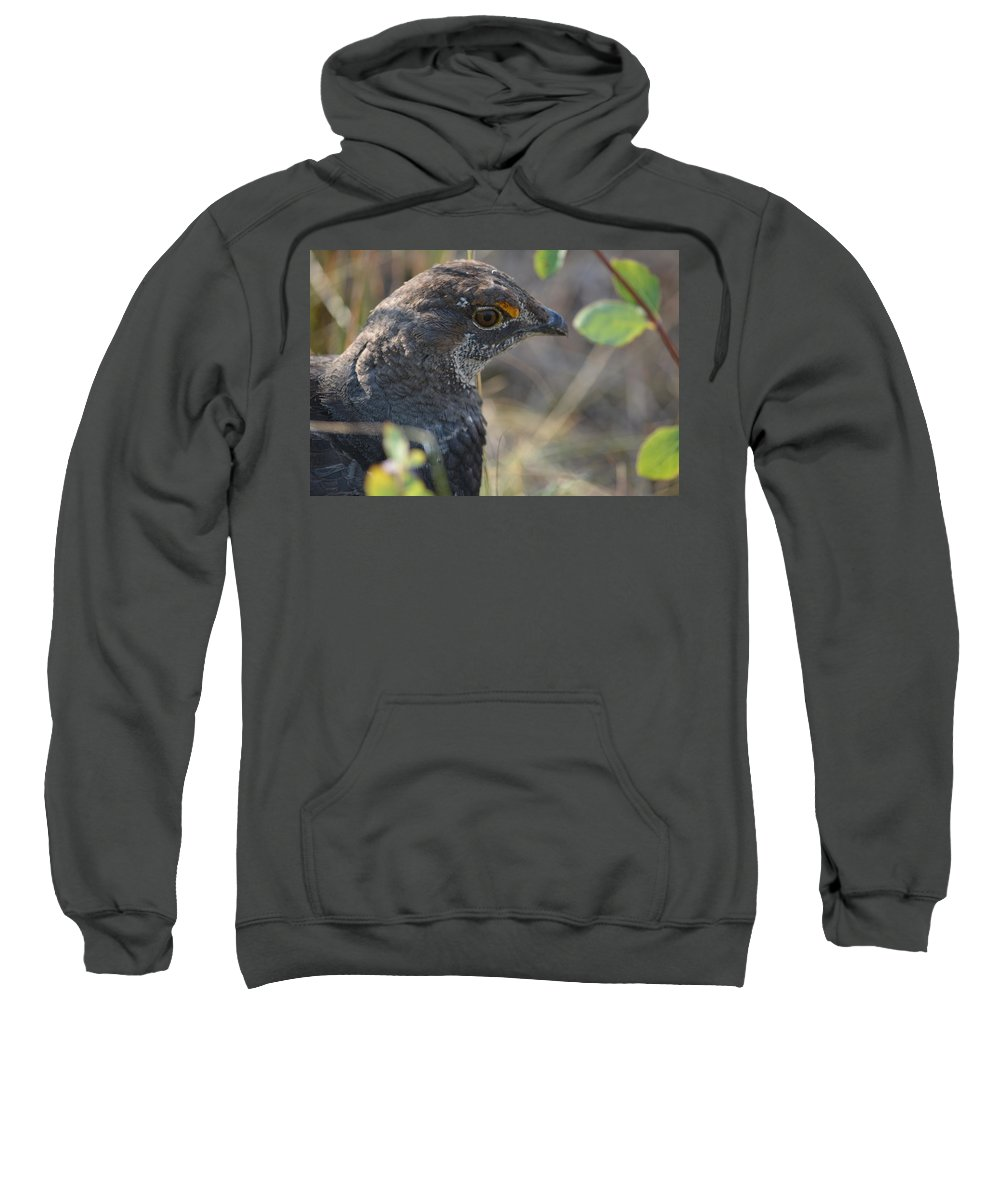 Grouse Sweatshirt featuring the photograph Grouse by Sonja Bratz