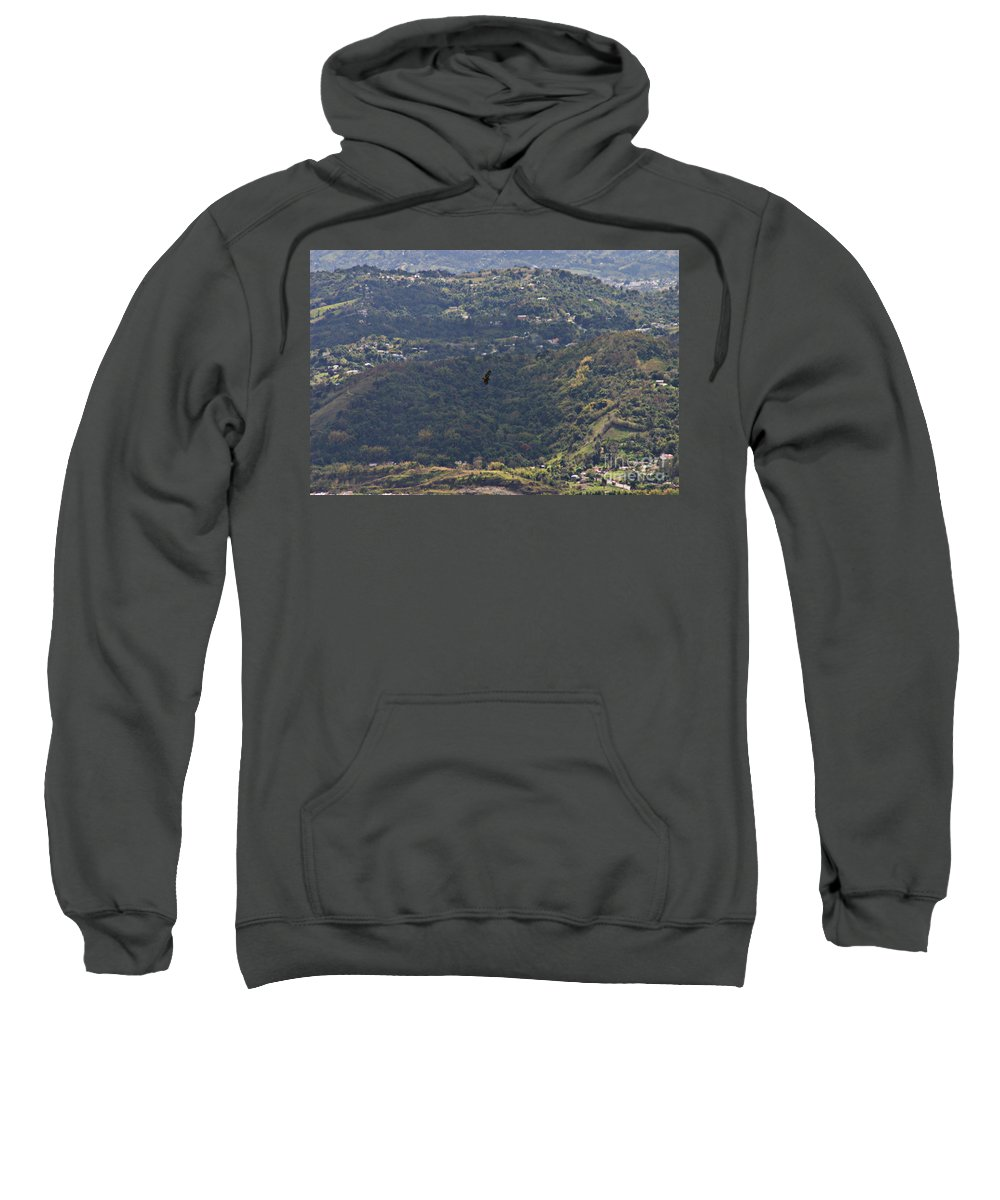 Bird Sweatshirt featuring the photograph Guaraguao by Gilbert Marcano