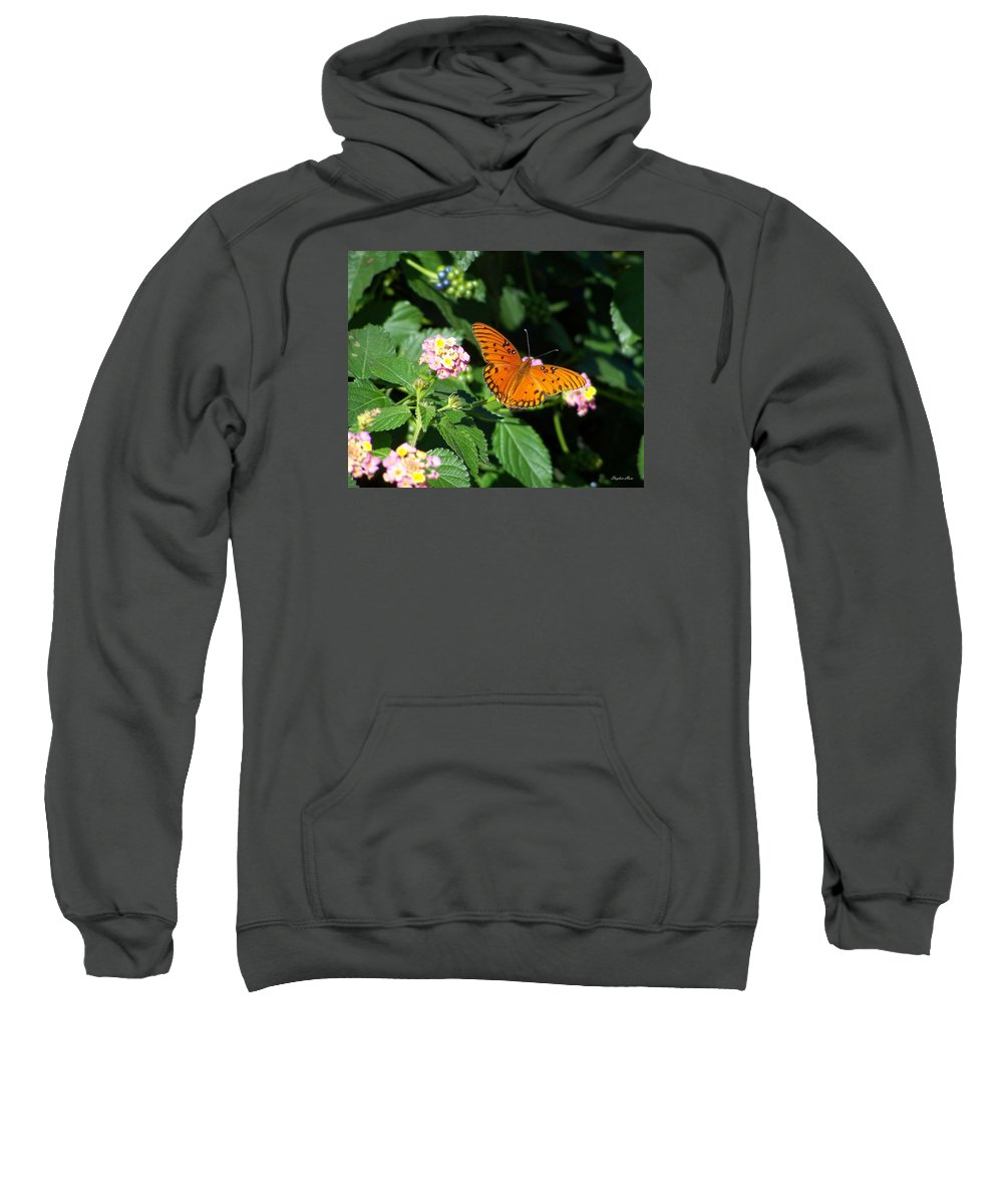 Gulf Fritillary Sweatshirt featuring the photograph 100_5412 Gulf Fritillary by Stephen Ham