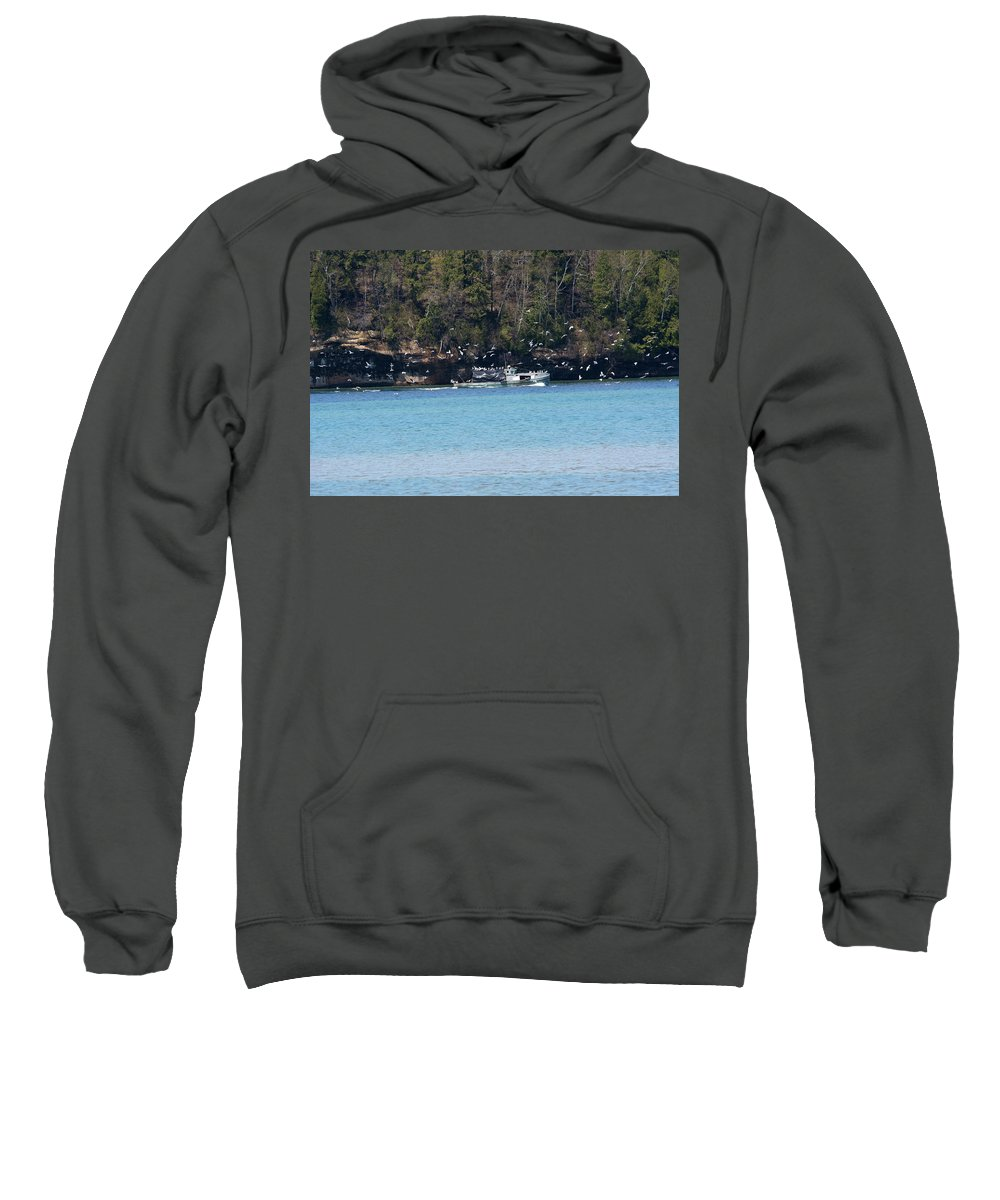 Munising Sweatshirt featuring the photograph Gull Attack by Linda Kerkau