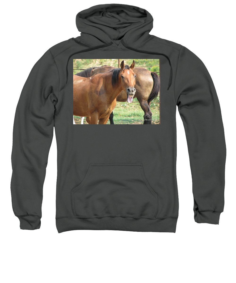 Horse Sweatshirt featuring the photograph Haaaaa by Amanda Barcon