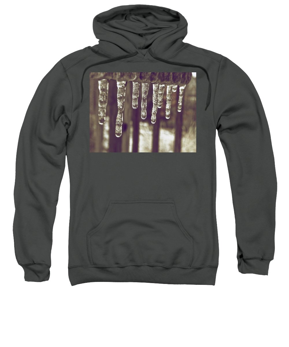 Sweatshirt featuring the photograph Hanging Around by Shannon Turek