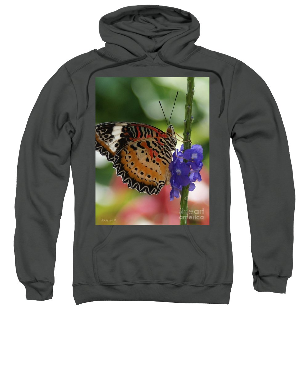 Butterfly Sweatshirt featuring the photograph Hanging On by Shelley Jones