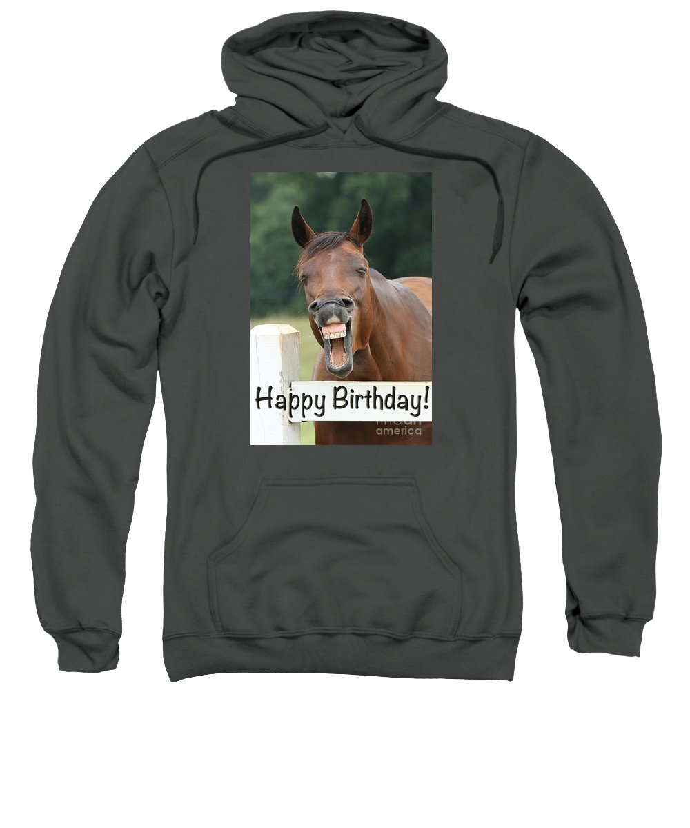 Emotions Sweatshirt featuring the photograph Happy Birthday Smiling Horse by Jt PhotoDesign
