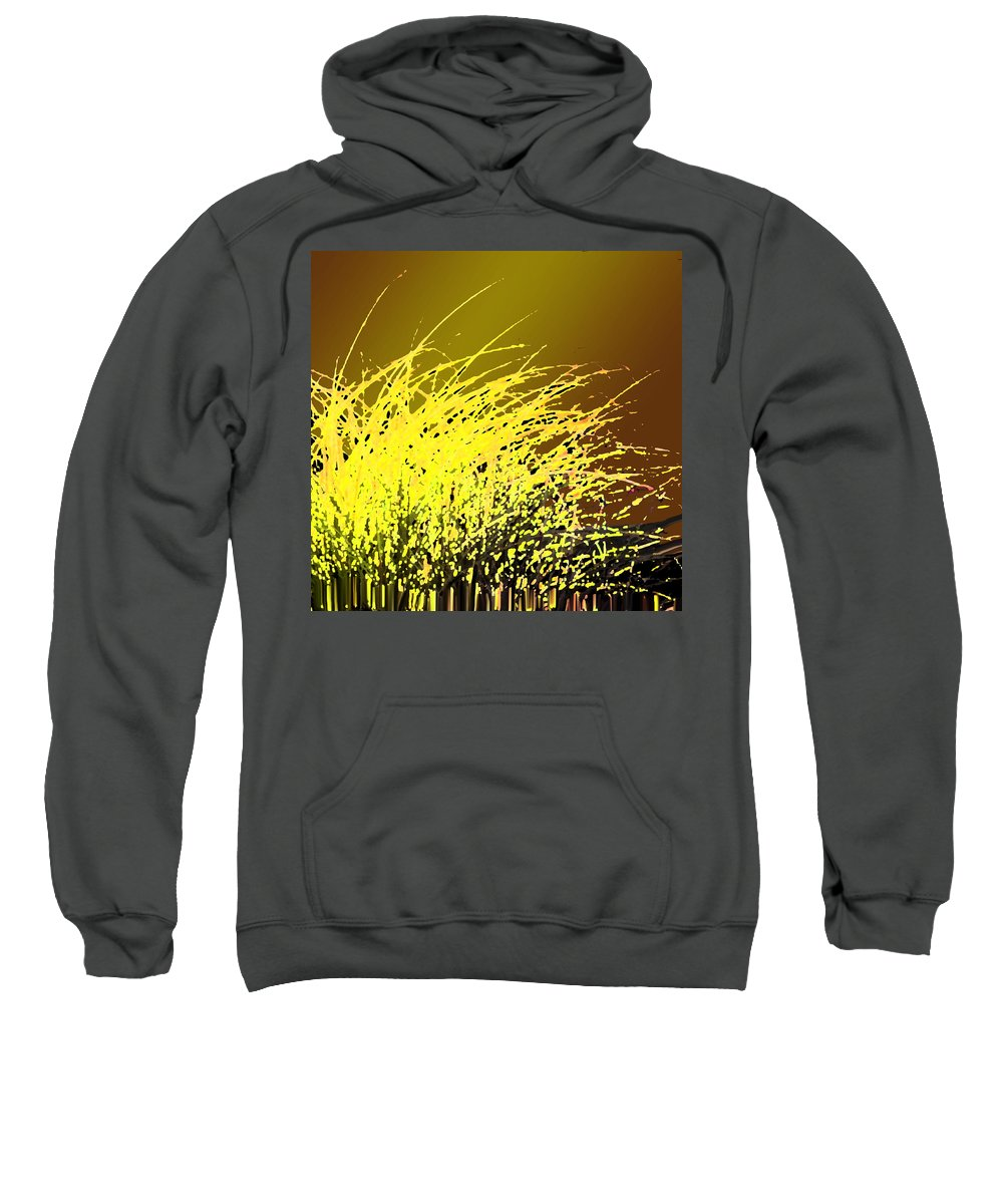 Grass Sweatshirt featuring the photograph Harvest by Ian MacDonald