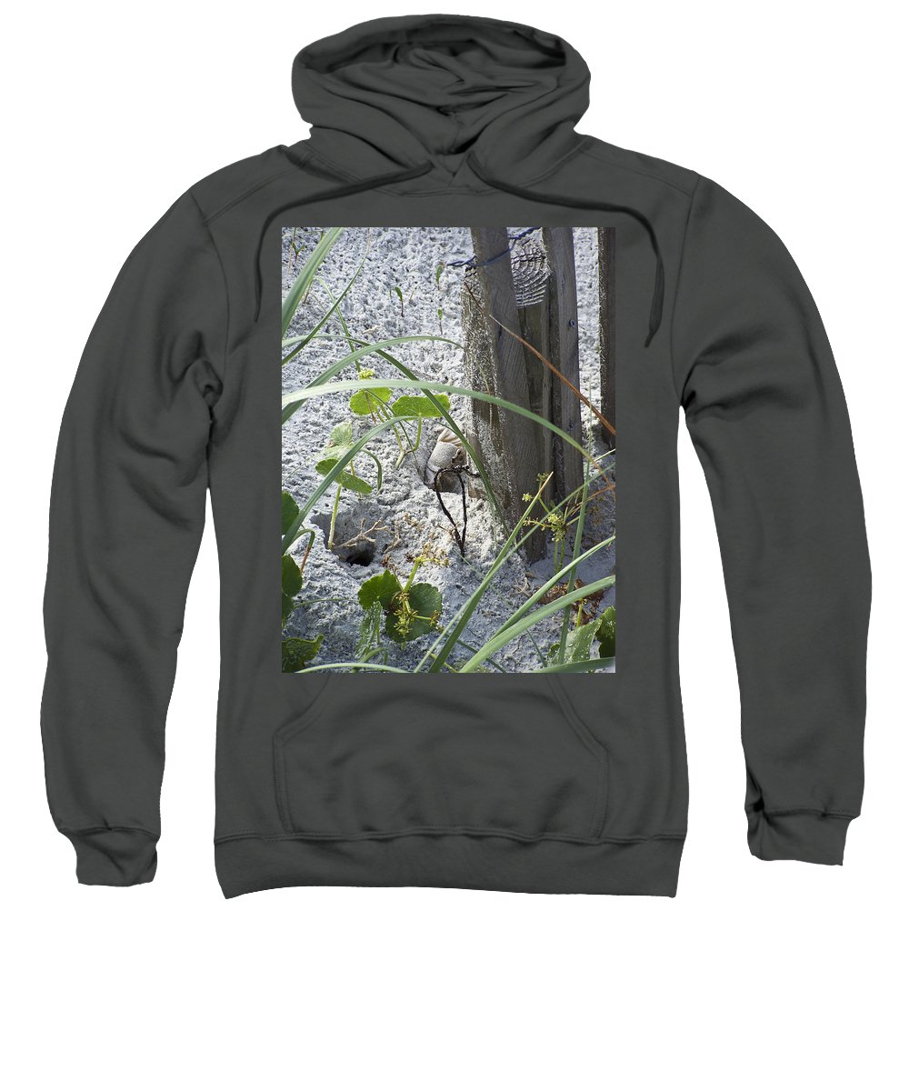Crab Sweatshirt featuring the photograph Have A Crabby Day by Teresa Mucha