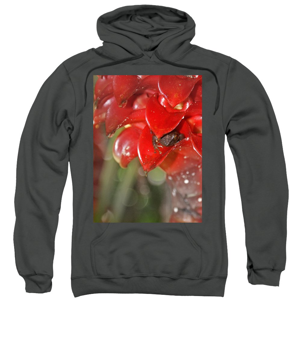 Frog Sweatshirt featuring the digital art Hawaiian Frog by Heather Coen