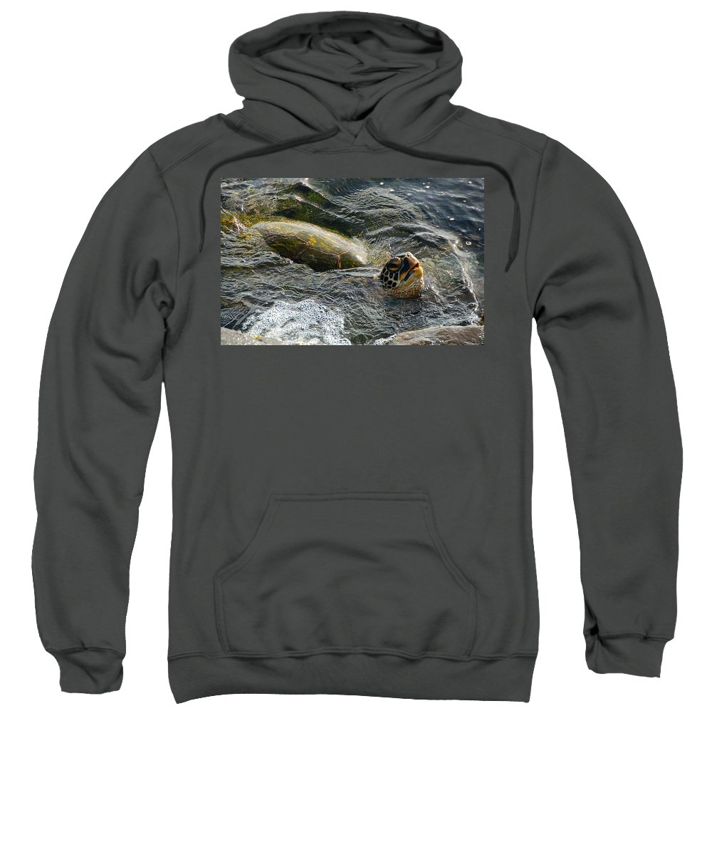 Green Sea Turtle Sweatshirt featuring the photograph Hawaii's Gentle Giants by David Coleman