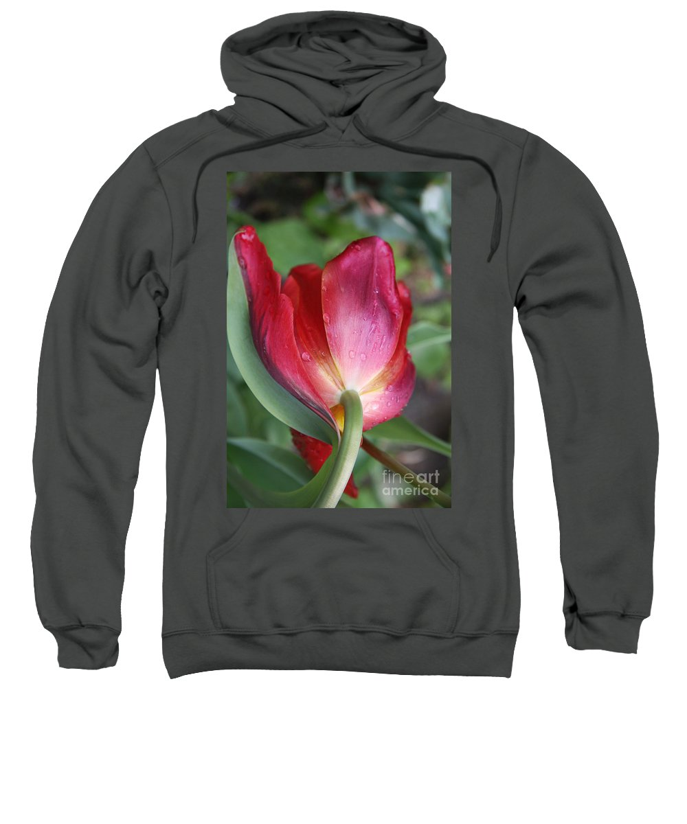 Tulip Sweatshirt featuring the photograph Head Down by Christiane Schulze Art And Photography