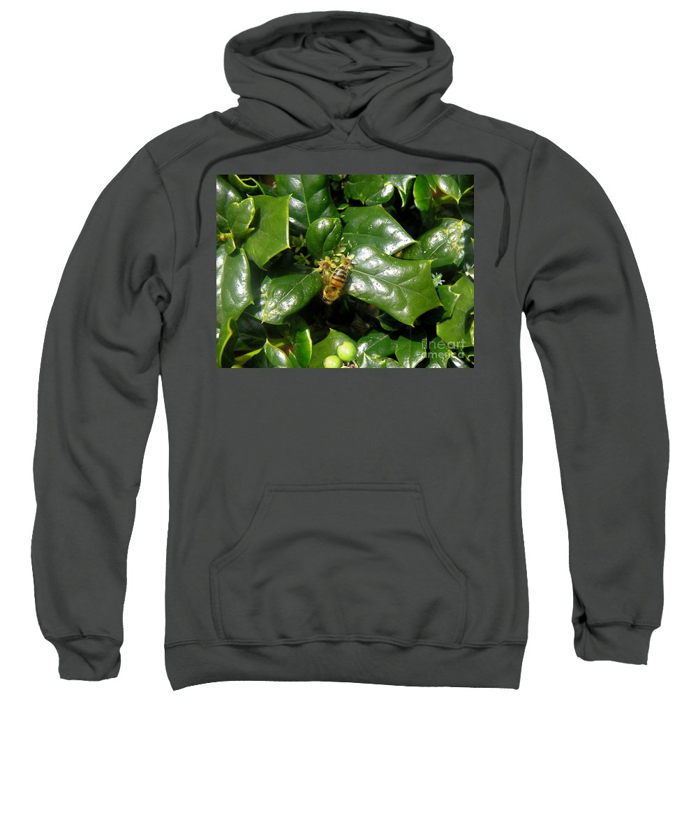 Nature Sweatshirt featuring the photograph Head Over Heels In The Holly by Lucyna A M Green