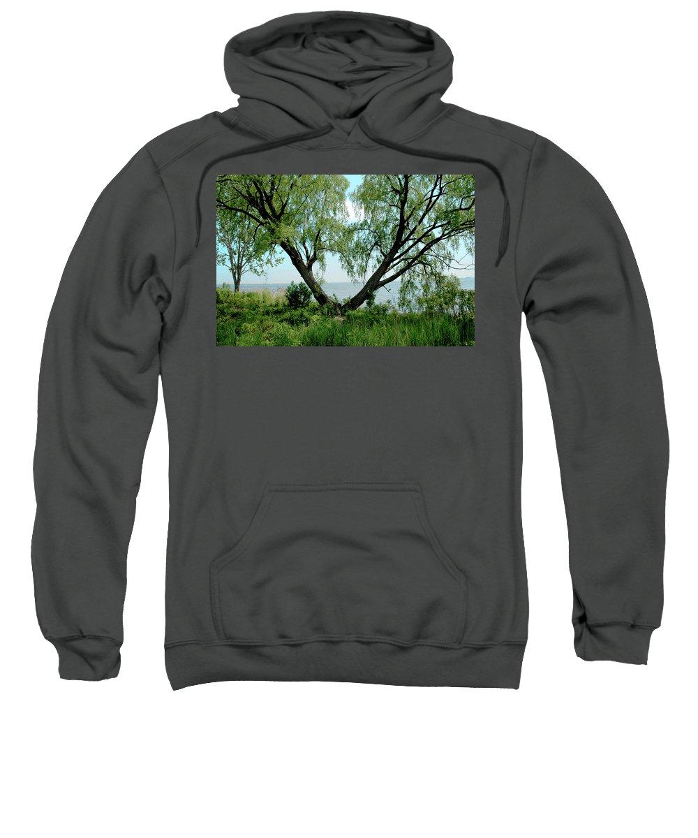 Usa Sweatshirt featuring the photograph Heart Tree On Lake Saint Clair by LeeAnn McLaneGoetz McLaneGoetzStudioLLCcom