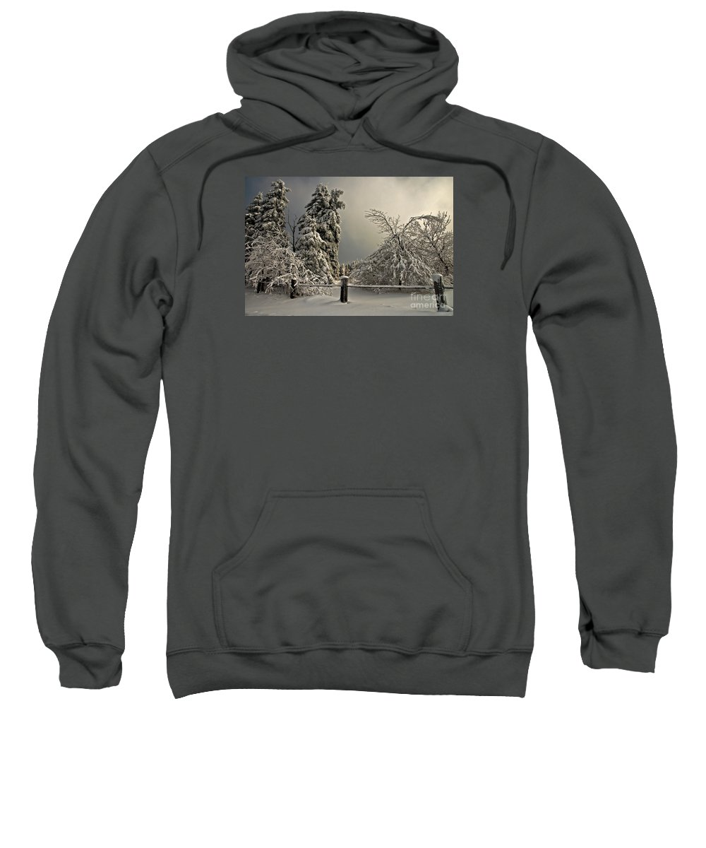 Snow Sweatshirt featuring the photograph Heavy Laden by Lois Bryan