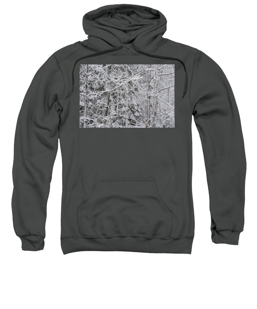 Marquette Sweatshirt featuring the digital art Heavy Snow by Bradley J Nelson