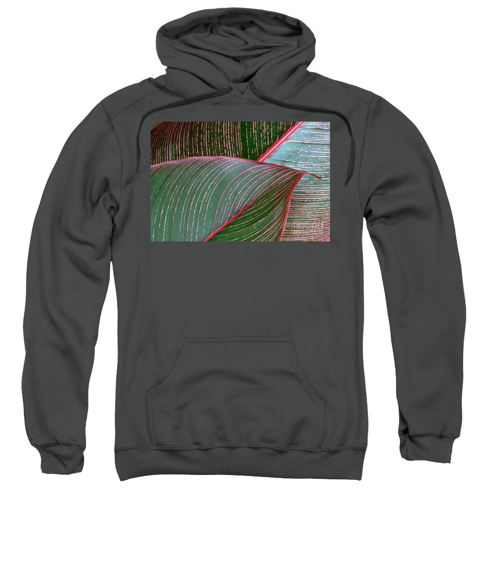 Closeup Sweatshirt featuring the photograph Heliconia Leaf by Peter French - Printscapes