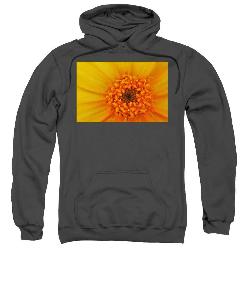 Yellow Flower Sweatshirt featuring the photograph Hello Sunshine by Kelly Foreman