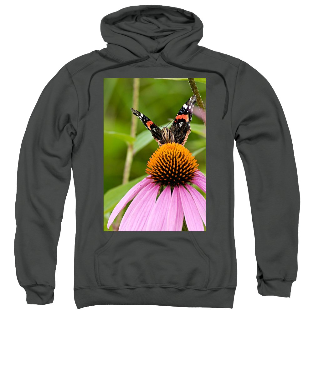 Photography Sweatshirt featuring the photograph Here Is Looking At You by Larry Ricker