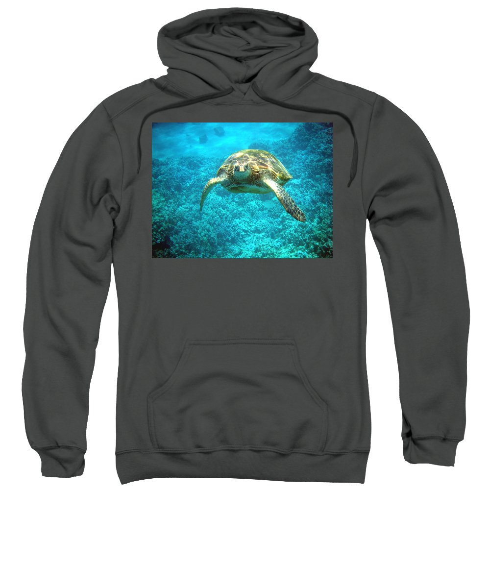 Sea Turtle Sweatshirt featuring the photograph Here's Looking At You by Angie Hamlin