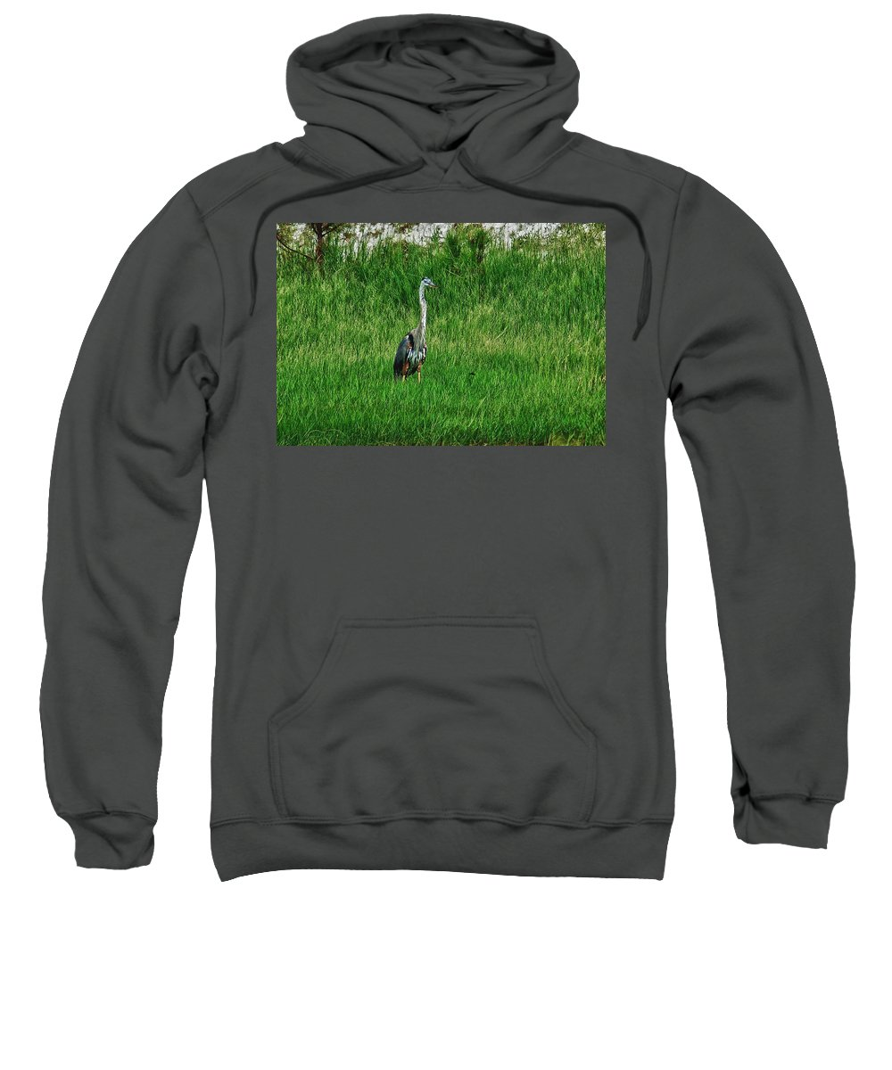 Alabama Photographer Sweatshirt featuring the digital art Heron In The Grasses by Michael Thomas