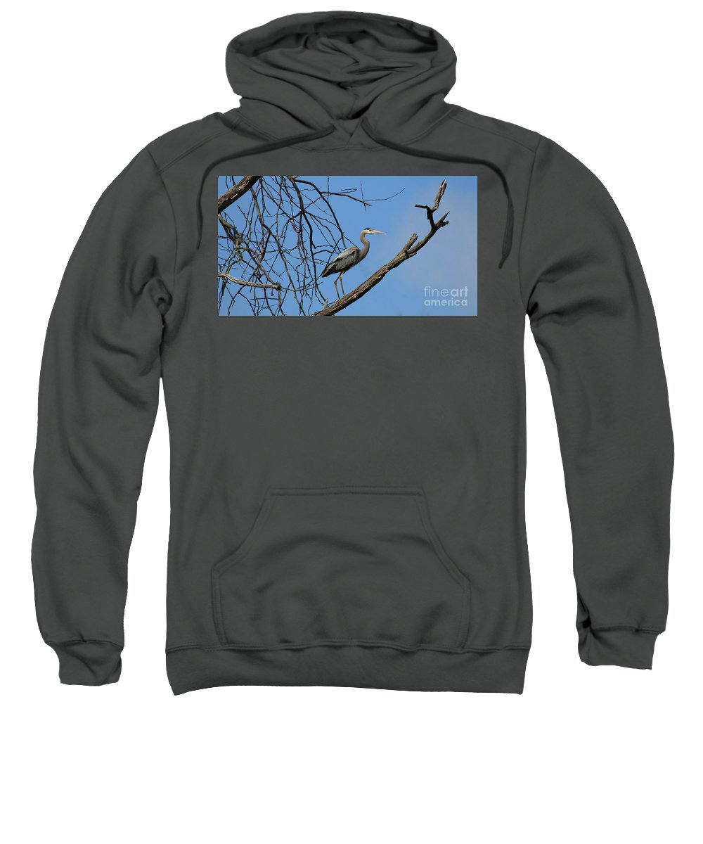 Heron In Tree Sweatshirt featuring the photograph Heron In Tree 4998 by Jack Schultz