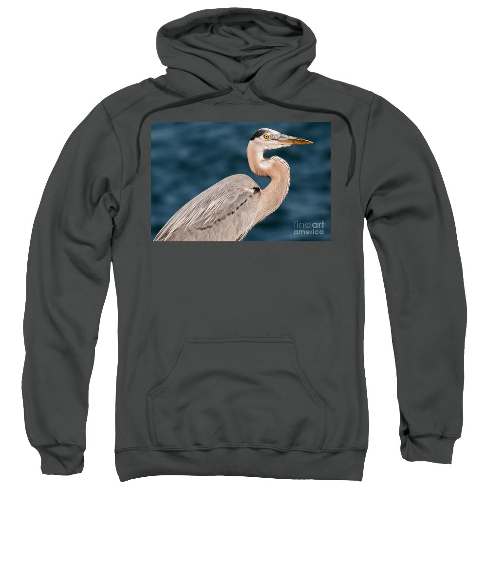 Heron Sweatshirt featuring the photograph Heron Portrait by Gaby Swanson