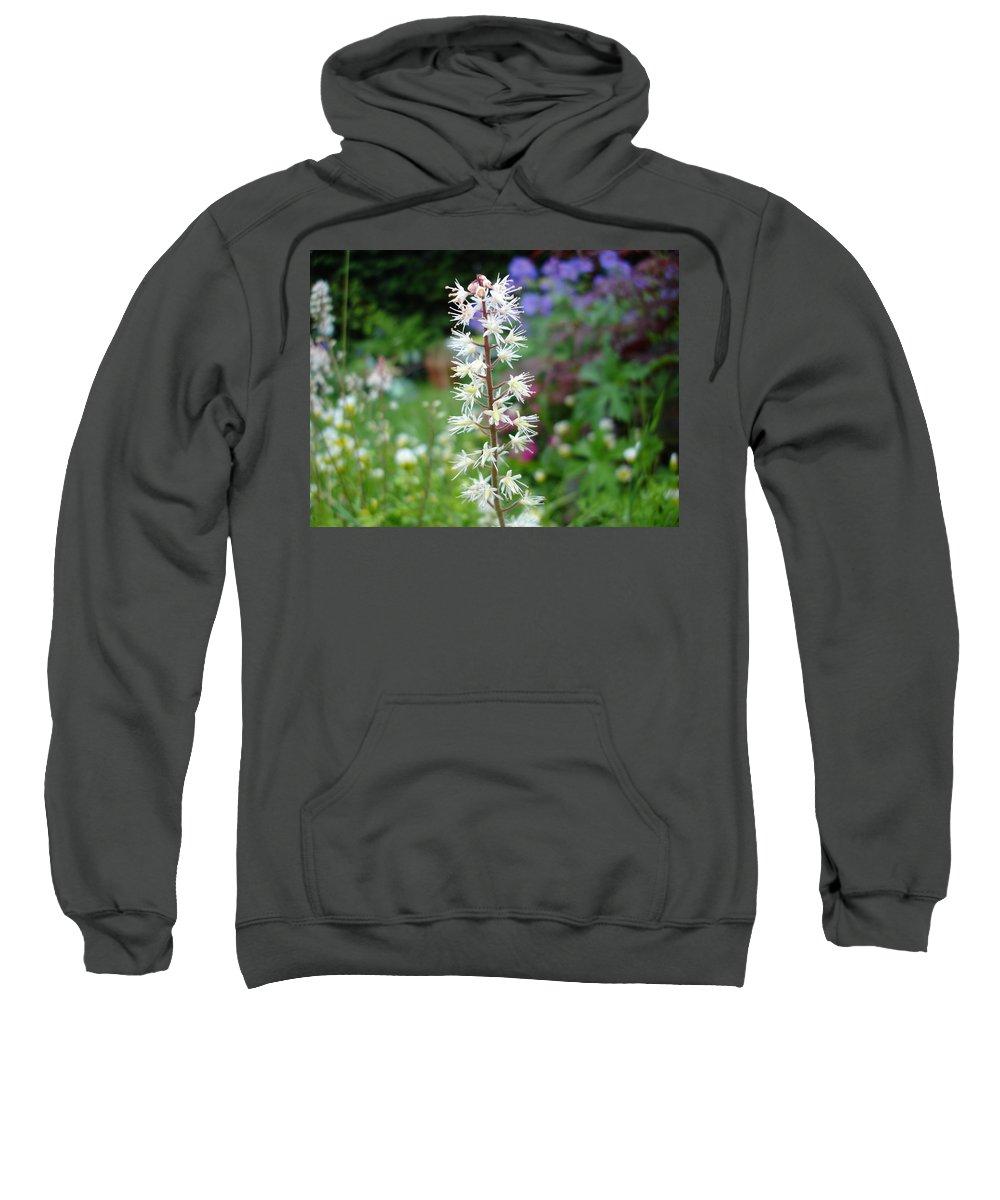 Flower Sweatshirt featuring the photograph Heucharella - Fairy Bells by Susan Baker